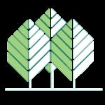 Michiana Tree Works